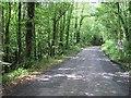 SO6767 : Minor road, Eastham by Richard Webb