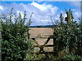 SE7466 : Footpath towards Firby by JThomas