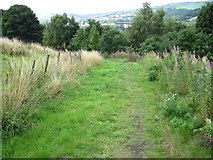 SE0914 : Colne Valley Circular Walk footpath by Chris Wimbush