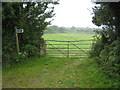 SX2081 : Public footpath on the edge of Carne Down by Rod Allday