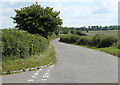ST6463 : 2010 : Minor road to Hunstrete by Maurice Pullin