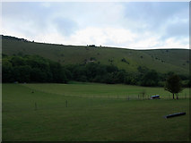 TQ2411 : South Town Field by Simon Carey