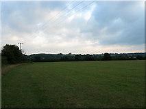 TQ2411 : New Field by Simon Carey