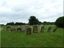 TM4160 : St Mary Magdalene , Friston: churchyard by Basher Eyre