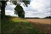 SK7628 : Public Bridleway to Scalford Road by Kate Jewell