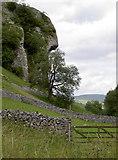 SD9768 : Kilnsey Crag by Neil Owen
