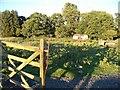NU1100 : The Field Hut by David Clark
