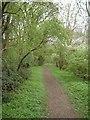 TM2090 : Footpath through Crow Green by Linden Parker