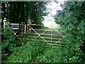NS4168 : Fence at the road to Barochan House by Stephen Sweeney