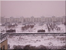 TQ4179 : View of Thames Barrier Park in the snow. by Anon