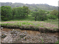 NN1236 : Deciduous woodland, Glen Kinglass by Hugh Venables