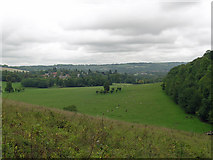 TQ2652 : View over Gatton Park by Robin Webster