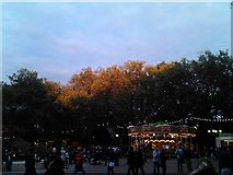 TQ2883 : The setting sun playing on the trees at the edge of London Zoo by Robert Lamb