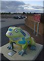 TA0439 : Larkin toad, Beverley by Paul Harrop