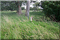 TL8995 : St Andrew, Tottington, Norfolk - Churchyard by John Salmon