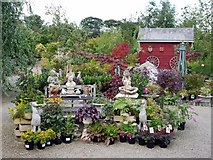 NZ1263 : Bradley Nursery and Gardens, Sled Lane, Wylam by Andrew Curtis