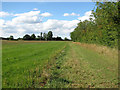 TM1095 : Footpath to Black Carr by Evelyn Simak