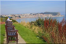 TA0487 : Seats, Overlooking South Bay by Mick Garratt
