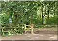 ST6363 : 2010 : Entrance to Lord's Wood by Maurice Pullin