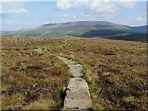 NT8615 : Pennine Way east of Windy Gyle by Oliver Dixon