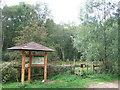 TF6922 : Roydon Common National Nature Reserve by Richard Humphrey