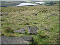 SD9911 : Castleshaw Moor towards Castleshaw Reservoirs by Chris Wimbush