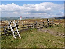 NT8716 : Clennell Street crosses the Pennine Way by Oliver Dixon