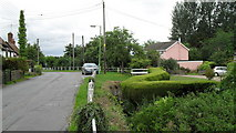 TM4077 : Topiary in Holton village centre by Basher Eyre