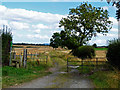 NZ4712 : Footpath off Roger Lane by Graham Scarborough