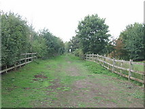 TQ8068 : Bridle Path through Eastcourt Meadow by Chris Whippet