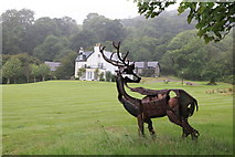 NM6356 : Rahoy house Stag by Michael Jagger