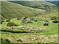 SD6596 : Sheepfold on Bram Rigg by David Brown