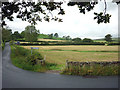 SD5977 : Pastures near Sellet Hall, Kirkby Lonsdale by Karl and Ali