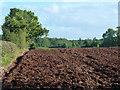 ST4993 : Ploughed field near Rhewl Cottage, Mynydd-bach by Ruth Sharville