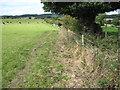 SE3100 : Footpath towards Cliffe Farm by Chris Wimbush