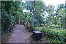 SU9946 : Mounting steps by the bridge over the Bramley Wey by N Chadwick