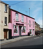 ST5393 : Pink House PARTY Shop, Chepstow by Jaggery