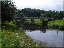 NY6820 : Appleby - footbridge over River Eden by Dave Bevis