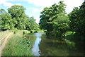 SU9946 : River Wey / Wey Navigation north of Broadford Bridge by N Chadwick