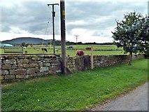 NZ5906 : Footpath Finger Post, Bank Foot Farm by Paul Buckingham