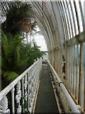 TQ1876 : Part of the walkway at the top of the Palm House, Kew Gardens by pam fray