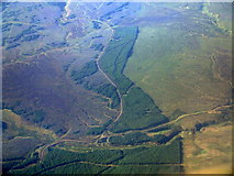 NS6234 : Slouch Moss from the air by Thomas Nugent