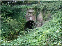 SU7151 : Greywell Tunnel on the Basingstoke Canal by Margaret Sutton