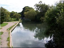 SU7451 : Marina on the Basingstoke Canal by Margaret Sutton