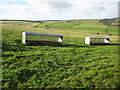 SO2185 : Sheep racks on Bicton Hill by Philip Halling