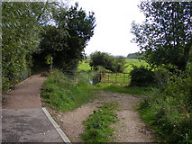 TG3204 : Junction of Wherryman's Way and the track to Rockland Marsh by Glen Denny