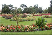 TL8564 : Abbey Gardens Bury St Edmunds by John Firth