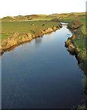 NS8838 : Douglas Water by wfmillar