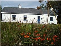 G7880 : Smart cottage at Crocknasharrach by louise price