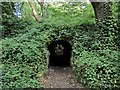 NZ2567 : Tunnel to Quarry Garden, Jesmond Dene by Andrew Curtis